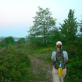 Dolly Sods Trail Picture